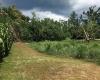 Vanuatu, ,Waterfront Land,For Sale,1087