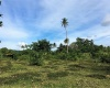 Vanuatu, ,Commercial,For Sale,1094