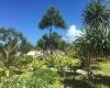Vanuatu, ,Waterfront Land,For Sale,1096